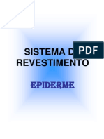 3ªAula-Epiderme