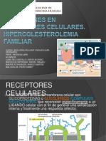 DESÓRDENES EN RECEPTORES CELULARES