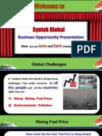 syntekglobalbusinesspresentation1-120511135746-phpapp02