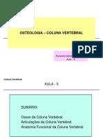 AULA 8 Anatomia Coluna Vertebral