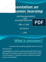 Consumer Learning Ppt