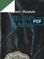 Zeleno busenje - Edhem Mulabdić