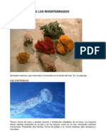 clasificacion_invertebrados