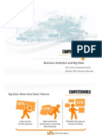 Business Analytics and Big Data Survey 2012 (Excerpt)