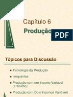 Capítulo 6 Produção - Microeconomia PINDYCK E RUBINFELD
