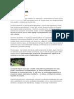 DISEÑO DE JARDINES (COMPLETO)
