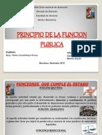 El Principio de La Funcion Publica