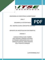 Iima-5 Reporte Poblacion u3 Desarrollo Sustentable