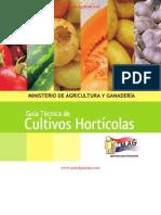 GUÍA TÉCNICA DE CULTIVOS HORTÍCOLAS - JUNIO 2012 - MINISTERIO DE AGRICULTURA Y GANADERÍA - PARAGUAY - PORTALGUARANI