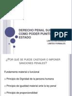 Derecho Penal Subjetivo o Como Poder Punitivo Del