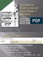 Distrofia Muscular de Duchenne y Becker