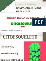 BCM 12 CHI Citoesqueleto