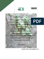 cultivo y manejo de plantas reporte del pepino