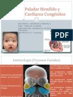 Labio Paladar Hendido y Defectos Cardiacos Congénitos