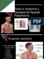 Aparato_respiratorio en Diapositivas