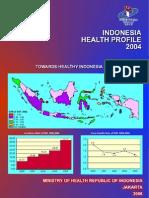 Indonesia Heatlh Profile 2004
