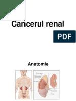 lq15Curs_14_-_cancere_urologice