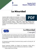 Tema 1 - La Minoridad