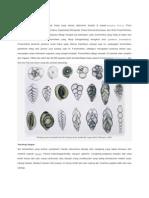 Foraminifera (2)