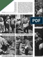 Primavera-Report von 1961 3