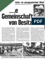 Primavera-Report von 1961 1
