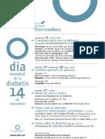 Activitats ADC Osona - Dia mundial diabetis 2013