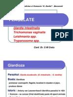 Giardia 3 Rom