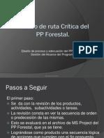 Modelo de ruta Crítica del PP Forestal