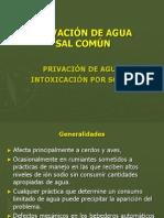PRIVACIÓN DE AGUA