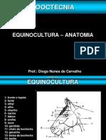 Equinocultura - Resenha