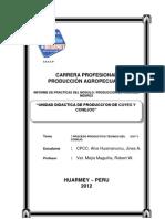 Informe 01 Produccion Cuye Conejo