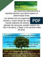 Los árboles y bosques