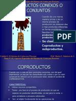 costos coproductos
