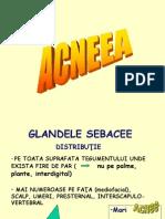 Acnee Si Rozacee