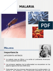 acido urico alto cansancio remedio para acido urico pie determinacion de acido urico pdf