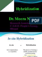 In situ Hybridization (ISH)