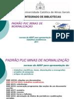 AULA PADRÃO 2011 (1)