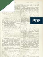 Czuczor Gergely - Fogarasi János - A magyar nyelv szótára V. kötet, 2. rész