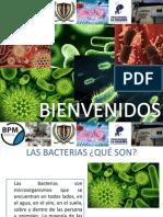 Bacterias. II
