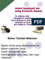 BAHAN TAMBAH SEMULAJADI
