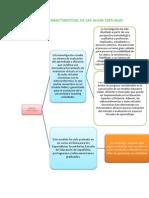 Concepto y Caracteristicas de Las Aulas Virtuales