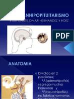 PANHIPOPITUITARISMO (2)