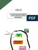 Presentacion Microorganismos PDF