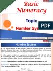 Basic Numeracy Number System