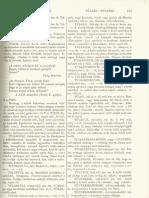 Czuczor Gergely - Fogarasi János - A magyar nyelv szótára VI. kötet, 3. rész