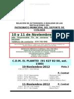 RELACION ACTIVIDADES 10-11 Noviembre 2012