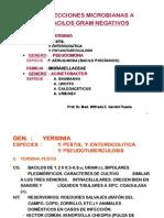MICRO-URP_YERSI_PSEUDO_ACINETO-BRUCE-LIST-BARTONE [Sólo lectura]