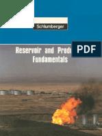 Reservoir Production Fundament