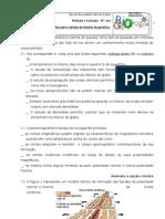 Ficha métodos estudo interior geosfera 10º