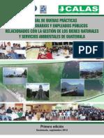 Manual de buenas prácticas funcionarios ambientales